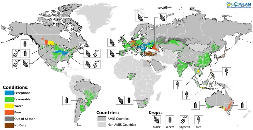 Crop conditions in AMIS countries (as of 28 October): Crop condition map synthesizing information for all four AMIS crops as of 28 October. Crop conditions over the main growing areas for wheat, maize, rice, and soybean are based on a combination of national and regional crop analyst inputs along with earth observation data. Only crops that are in other-than-favourable conditions are displayed on the map with their crop symbol.