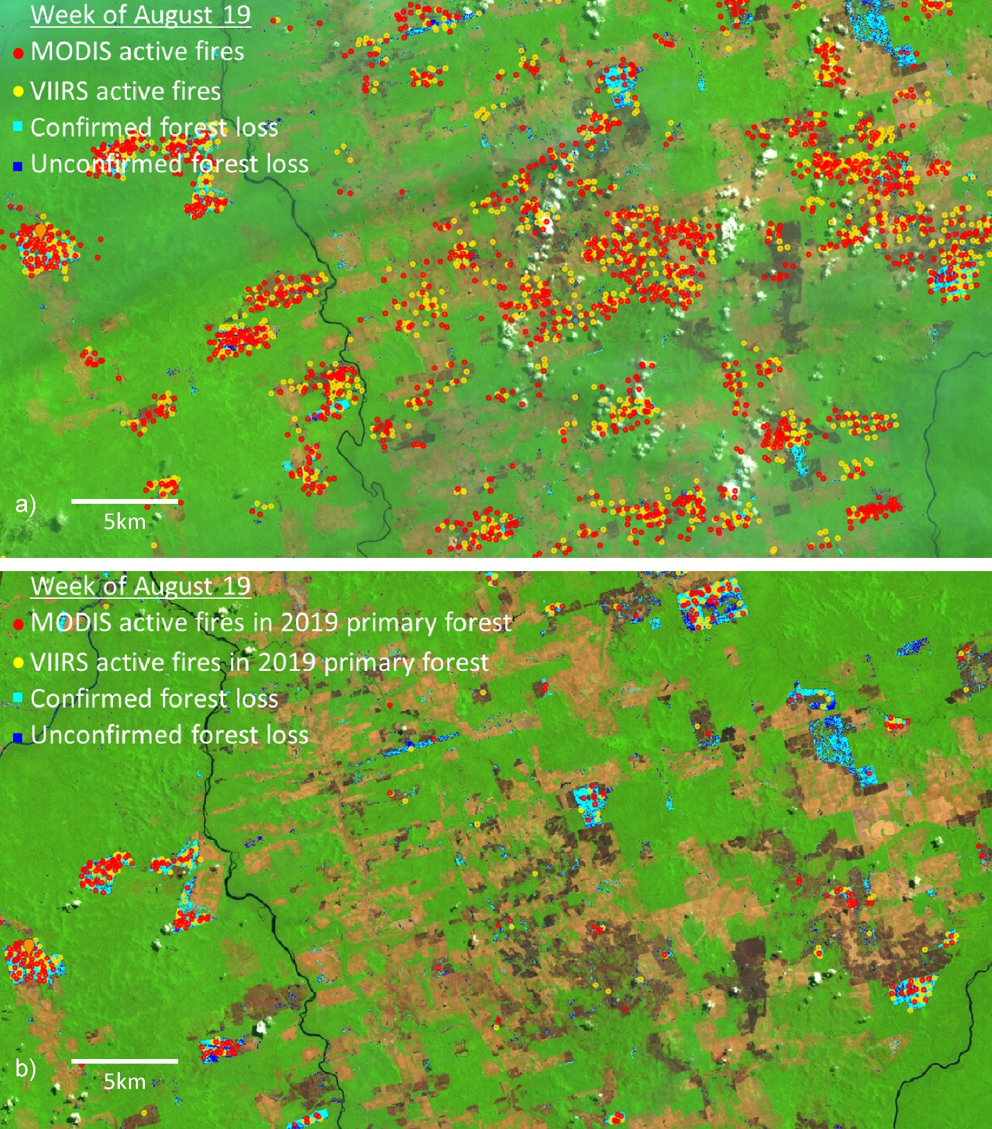 Figure 4. Depiction of deforestation frontier from Amazonas State, Brazil, north of the town of Novo Progresso; a) shows all fires - note that most fires are on already cleared land; b) shows fires on recently cleared primary forest.