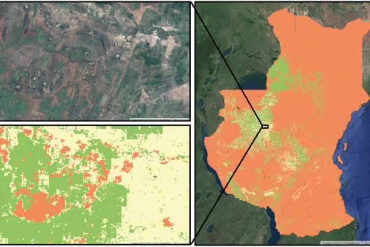 Building accurate maize yield maps for smallholders with