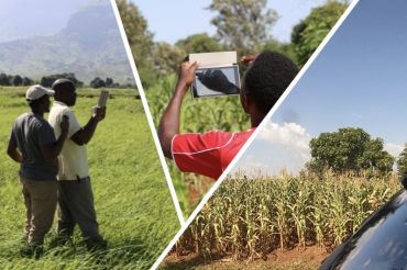 Collage of people taking pictures of crop fields