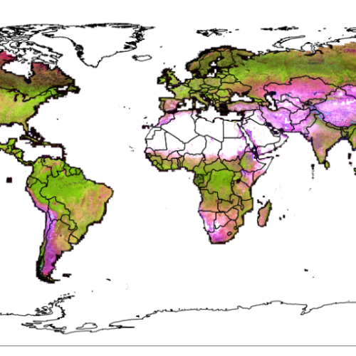 Global Land Analysis & Discovery group