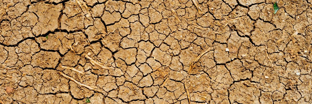 dry cracked ground caused by drought