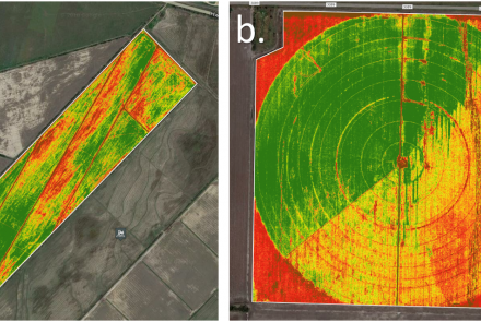 Figure 2. Overflight conducted by manned aircraft on April 11th, 2018. After data was processed, normalized difference vegetation index (NDVI) maps generated for rice (a.) and corn (b.) were used to select sub-areas within each field for UAS and ground data surveying.