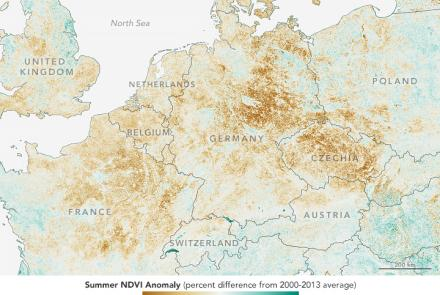 Economists are using satellite data to help refine market prices of important crops.